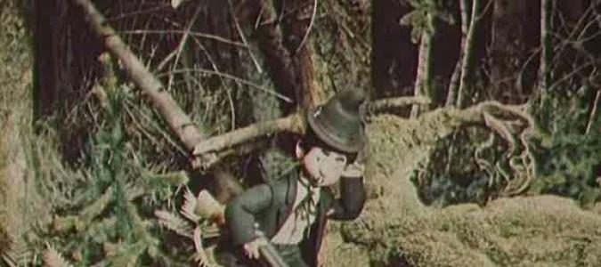 Карандаш и Клякса веселые охотники 1954 . Мультфильм про таксу