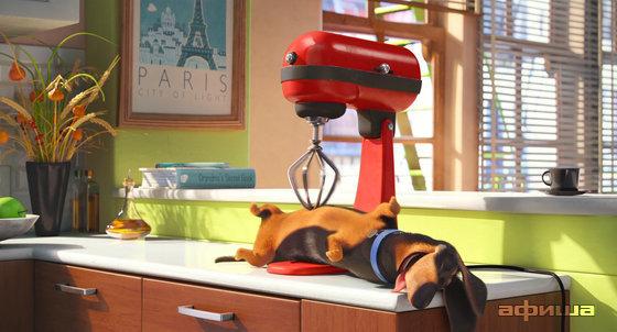 Такса из мультфильма Тайная жизнь домашних животных. Мультфильм про таксу